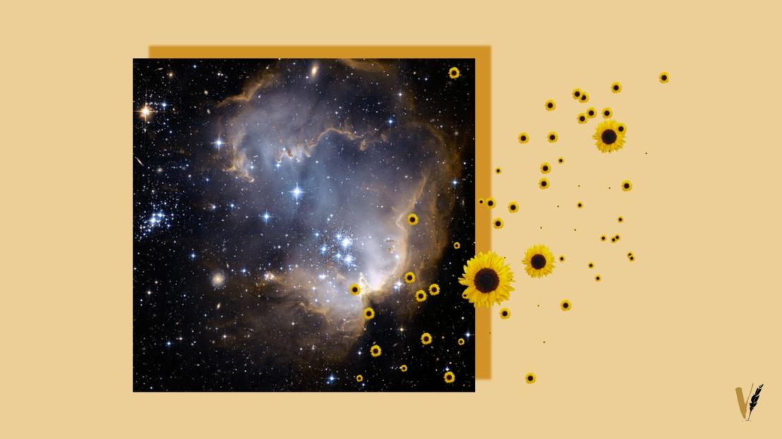 The Universe InsideMe