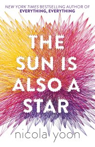 the sun is also a star review