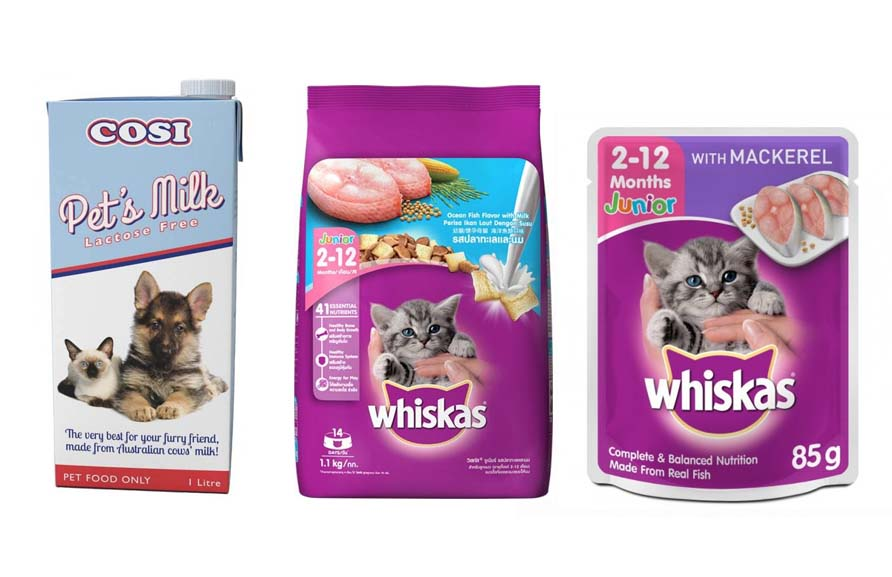 cat food and milk