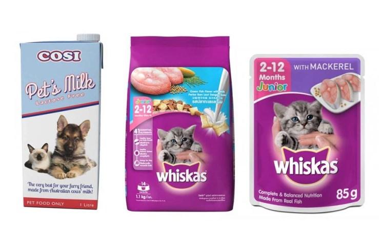 cat food and milk
